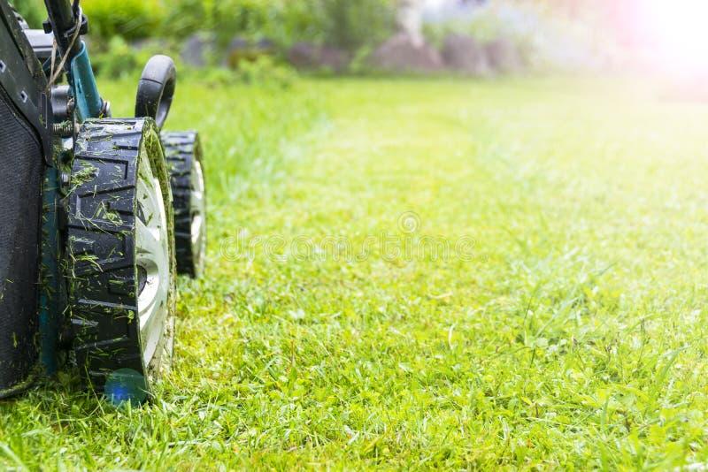 Meja gräsmattor, gräsklippare på grönt gräs, gräsklippningsmaskingräsutrustning som mejar hjälpmedlet för trädgårdsmästareomsorga royaltyfri fotografi