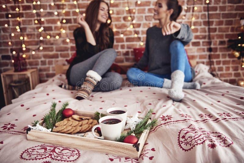 Mejores amigos durante tiempo de la Navidad fotografía de archivo