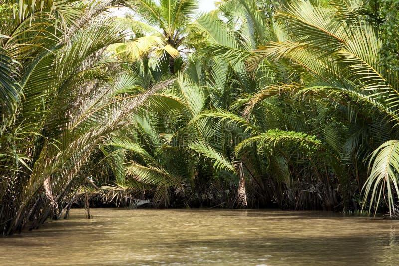Mekong του δέλτα Βιετνάμ στοκ εικόνες