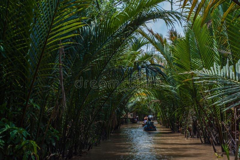 Mekong delta w południowym wietnamu fotografia royalty free
