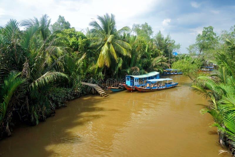 Mekong rzeka, Wietnam obrazy royalty free