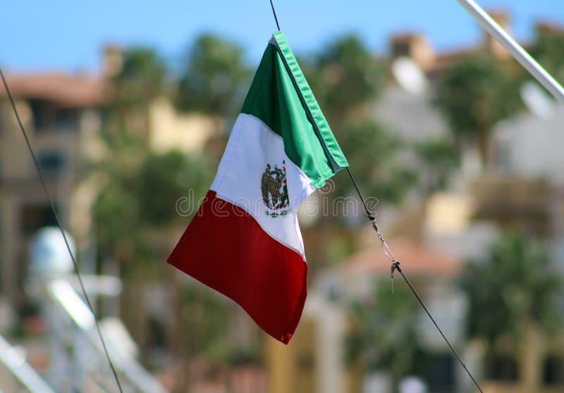 Meksyk flaga w żeglowania wodniactwo w oceanie, statek przy morza zakończeniem w górę wysokiej jakości wizerunku luksusowego dośw zdjęcie royalty free