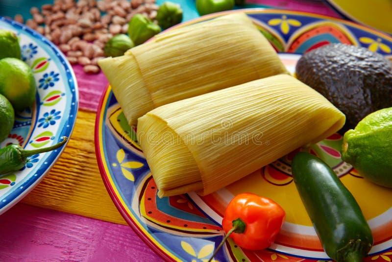 Meksykańscy Tamale tamales kukurydzani liście obraz royalty free