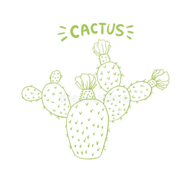 Meksykański Jadalny kaktus lub kaktusy dla Cinco De Mayo