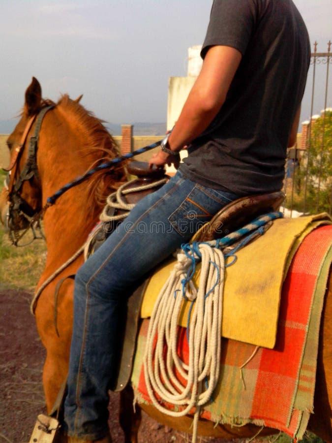 Meksykański jeździec na sposobie pracować zdjęcie royalty free