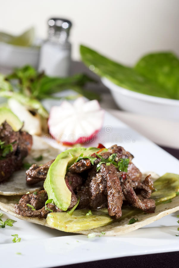Meksykański smakosz towarzyszący avocado fotografia stock