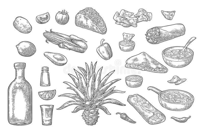 Meksykański tradycyjny jedzenia i napoju set Tequila, Guacamole, Burrito, Tacos ilustracja wektor