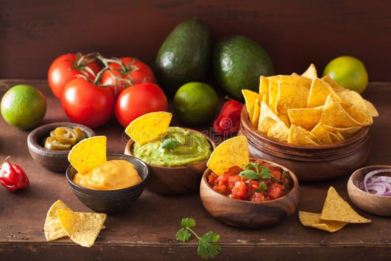 Meksyka?scy nachos z guacamole, salsa i serowym upadem, obraz stock