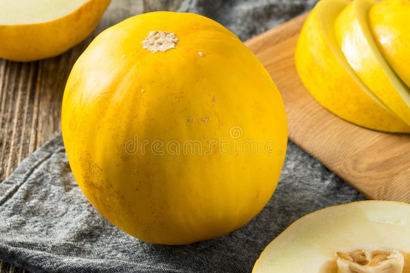 Melão amarelo orgânico amarelo cru fotos de stock