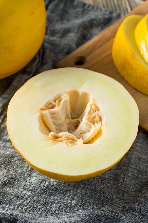 Melão amarelo orgânico amarelo cru fotografia de stock royalty free
