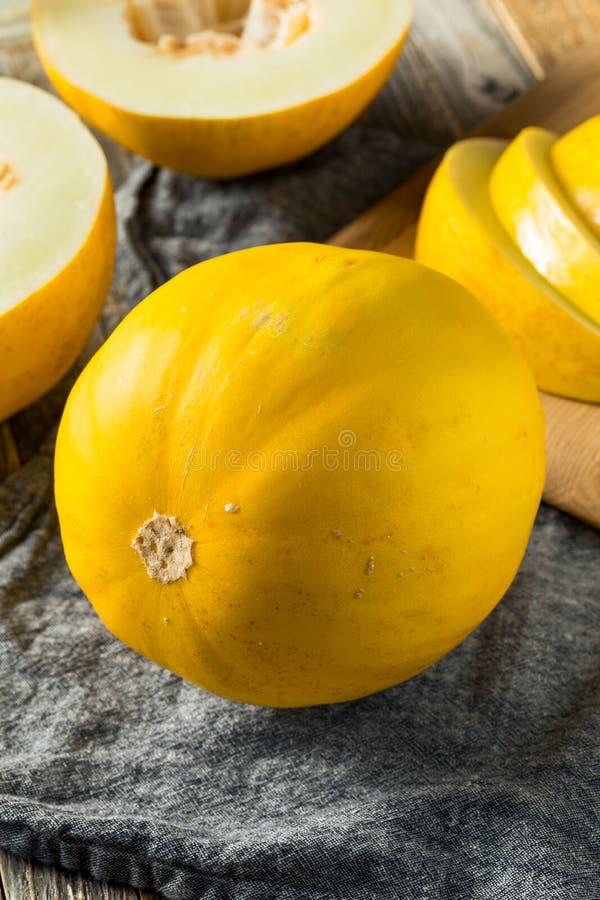 Melão amarelo orgânico amarelo cru fotografia de stock