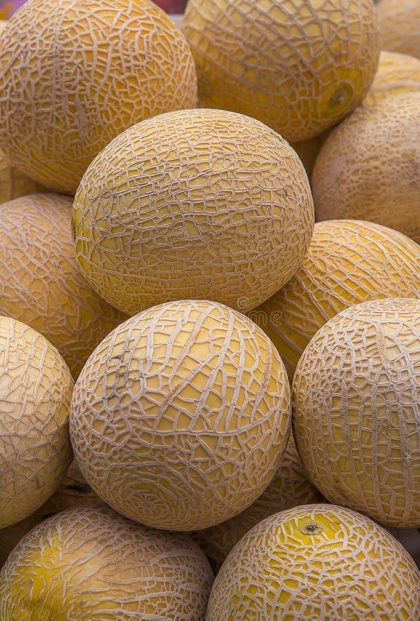 Melão amarelo vegetal, amarelo, orgânico, melões, tropicais foto de stock