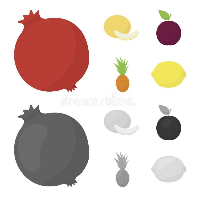 Melão, ameixa, abacaxi, limão Os frutos ajustaram ícones da coleção nos desenhos animados, ilustração monocromática do estoque do ilustração royalty free