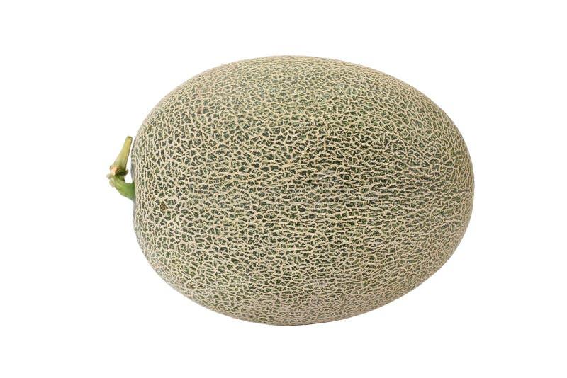 Melão de Hami do melão do cantalupo fotos de stock