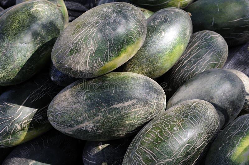 Melão de Hami (uma variedade de muskmelon) foto de stock royalty free
