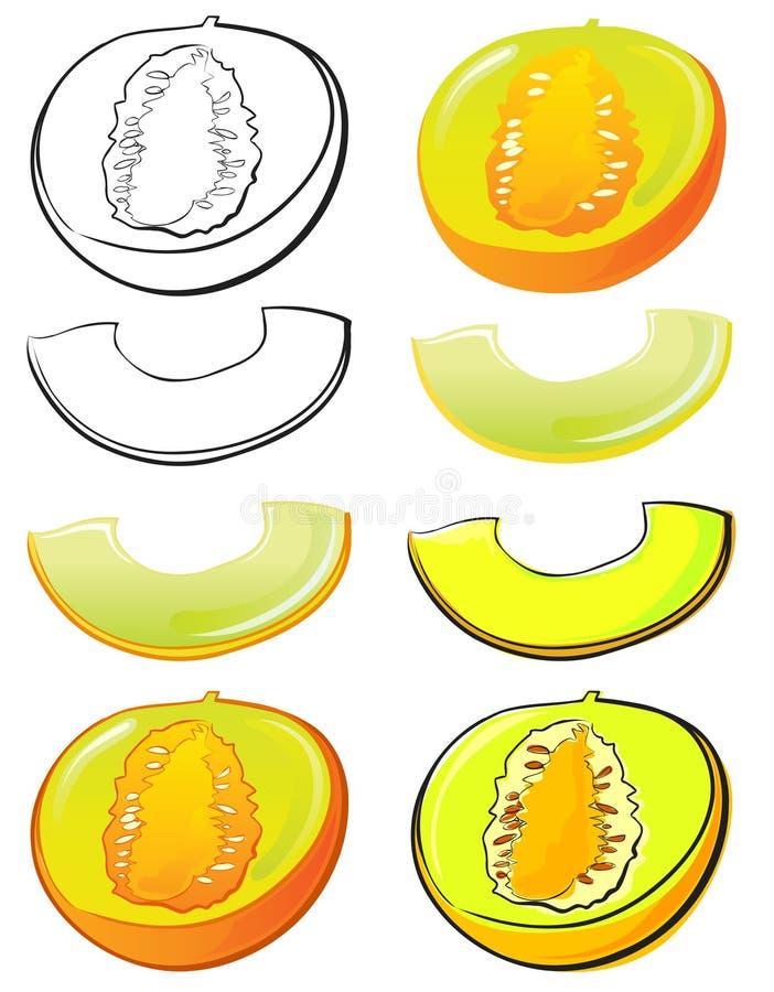 Melão de Honeydew ilustração do vetor