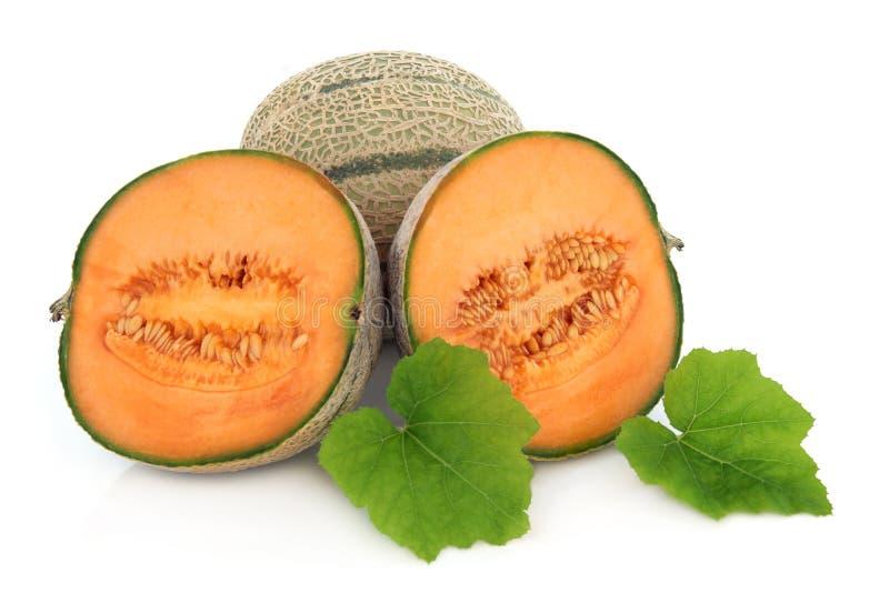 Melão do Cantaloupe imagens de stock