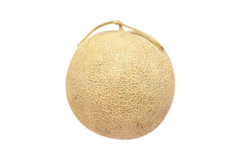 Melão do Cantaloupe isolado no fundo branco fotografia de stock royalty free