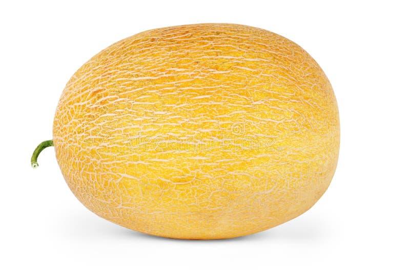 Melão, fatias do melão isoladas no fundo branco imagem de stock
