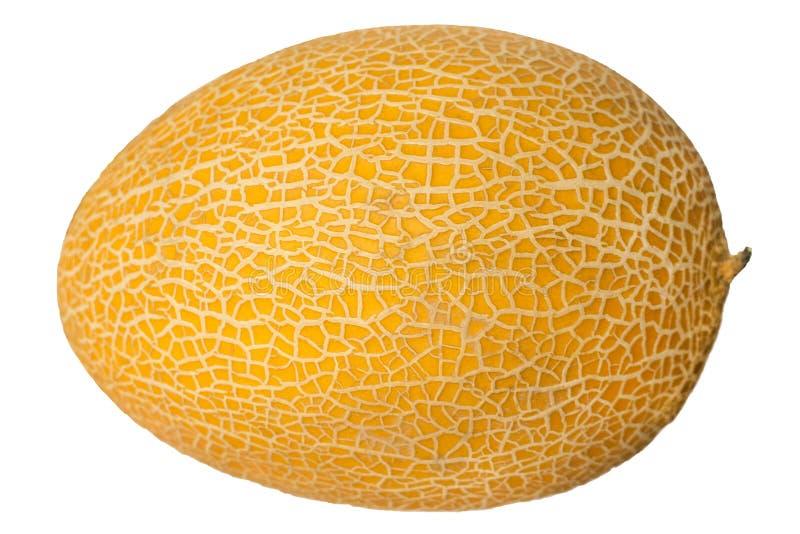 Melão maduro isolado no fundo branco fotografia de stock royalty free