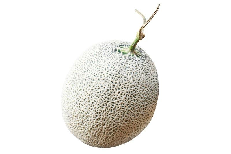 Melón aislado, redes verdes de la roca del melón fotografía de archivo
