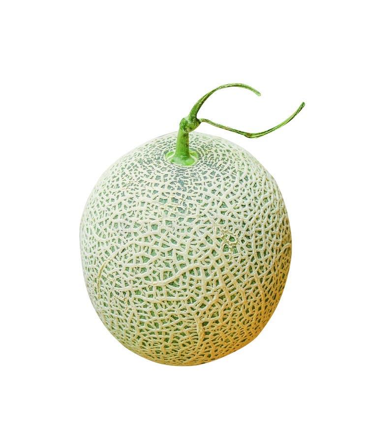 Melón de la roca o melones frescos de los cantalupos, redes verdes del melón aisladas en el fondo blanco imagen de archivo libre de regalías