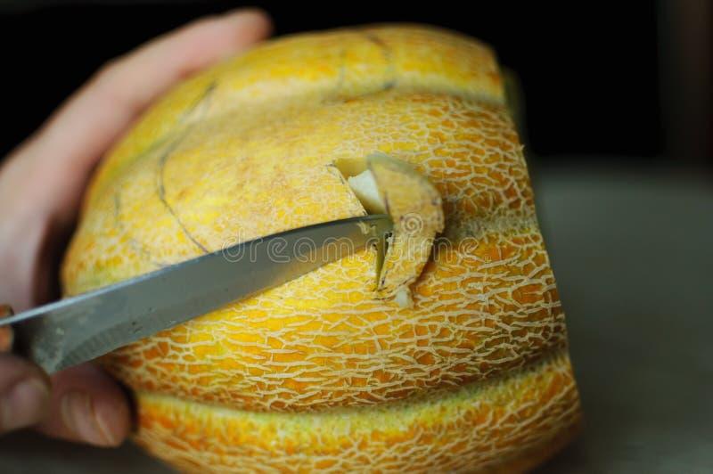 Melón inusual de Halloween, cortando proceso, las semillas y las sobras en la tabla de cocina, el cuchillo y las manos del varón fotos de archivo