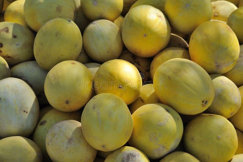 Melões doces amarelos imagem de stock
