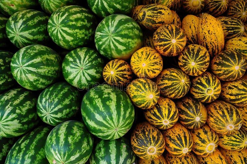 Melões e melancias frescos e saborosos frescos imagem de stock royalty free