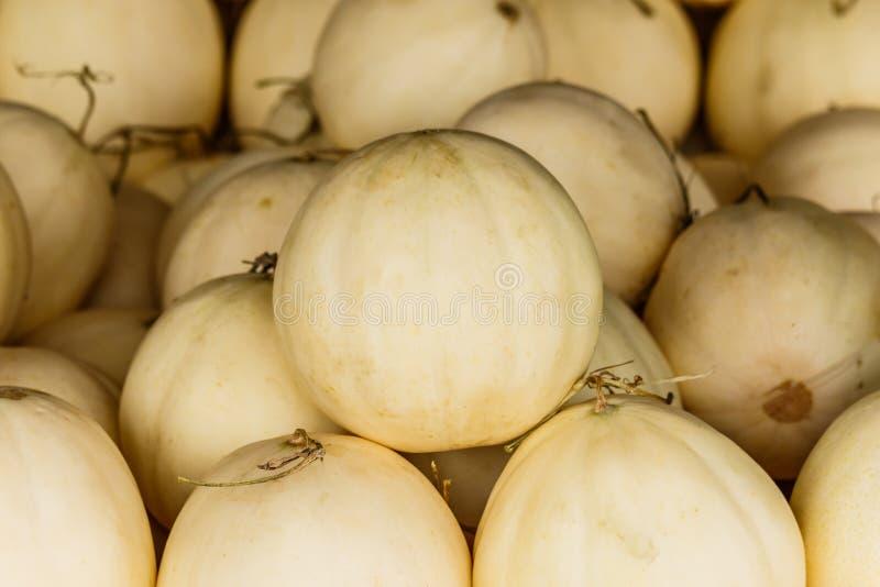 Melões orgânicos frescos do cantalupo empilhados na tabela para a venda no lugar imagem de stock