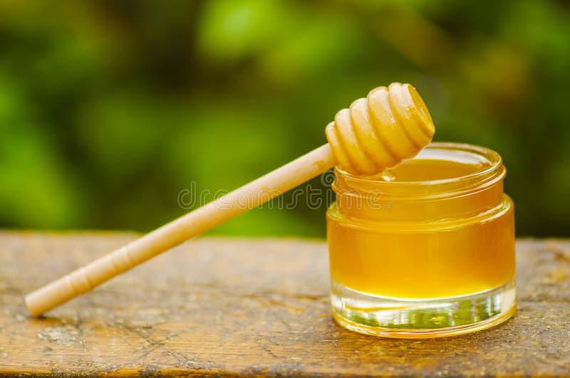Mel do Linden, partes de pentes e dipper do mel no fundo borrado do jardim foto de stock
