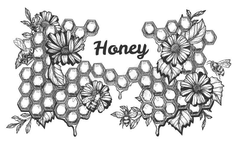 Mel doce e abelhas de trabalho ajustados ilustração do vetor