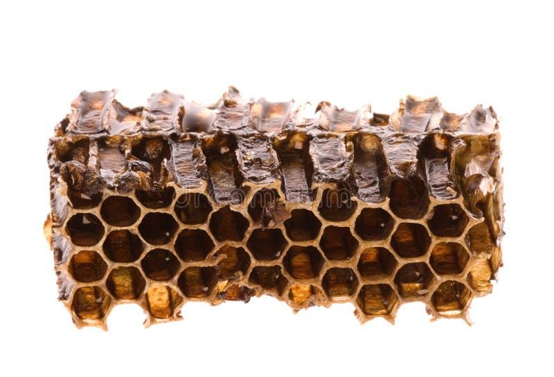 Mel no favo de mel imagens de stock