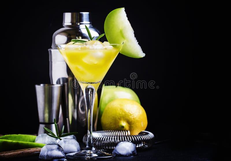 Mela alcolica martini del cocktail, con vermut asciutto, sciroppo, lemo fotografia stock