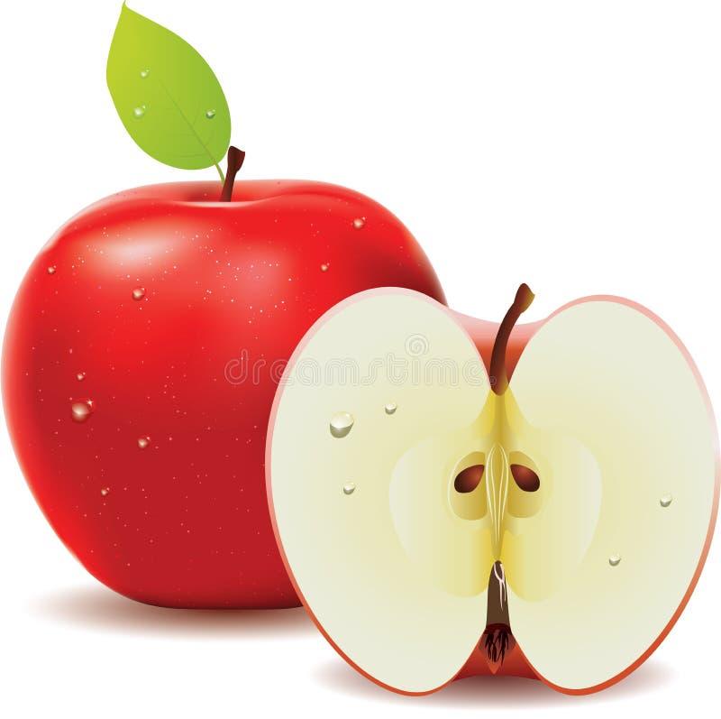 Mela rossa e metà della mela royalty illustrazione gratis