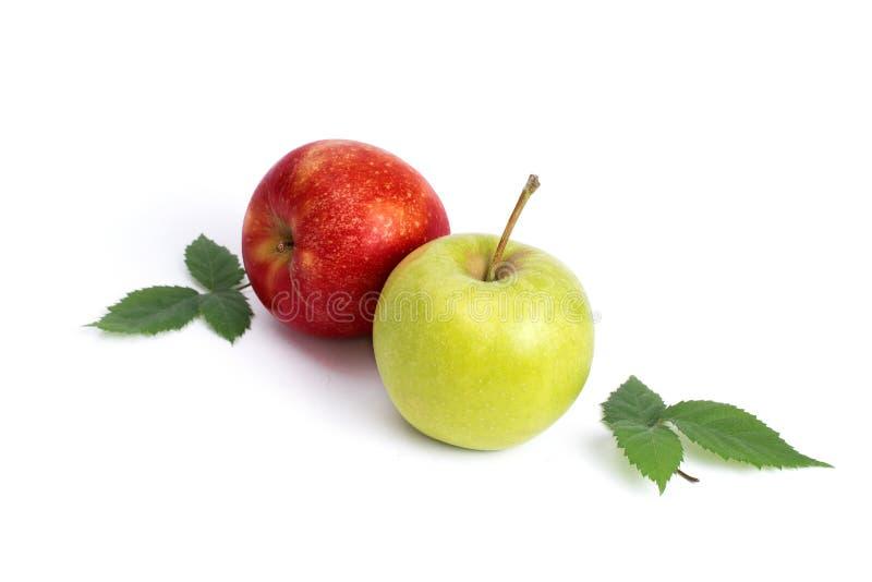 Mela rossa e verde su un fondo bianco Mele verdi e rosse succose su un fondo isolato Un gruppo di due mele con verde immagini stock libere da diritti
