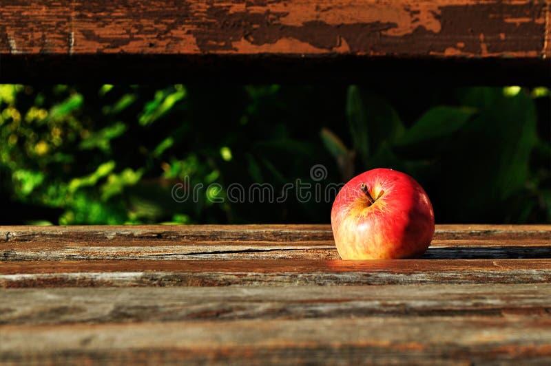 Mela rossa matura sul vecchio banco di legno nell'ambito della luce solare fotografie stock