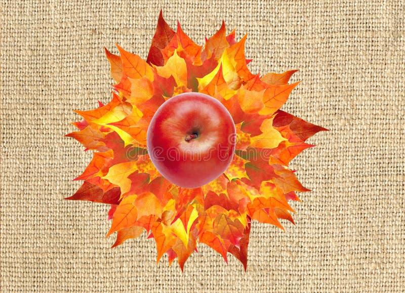 Mela rossa sul mazzo variopinto delle foglie di acero di autunno su tela immagine stock