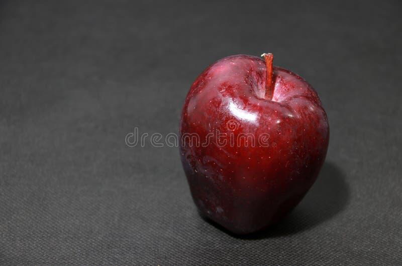 Mela rosso scuro sul pavimento nero è la frutta rotonda di un albero della famiglia rosa, che ha tipicamente carne croccante fotografia stock