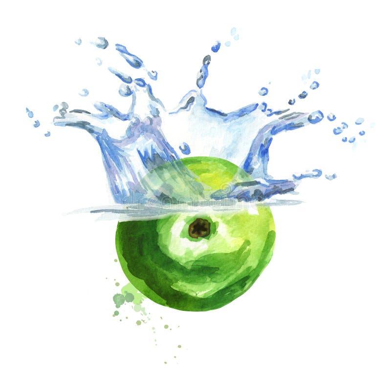 Mela verde fresca che cade nell'acqua isolata su fondo bianco Illustrazione disegnata a mano dell'acquerello illustrazione di stock