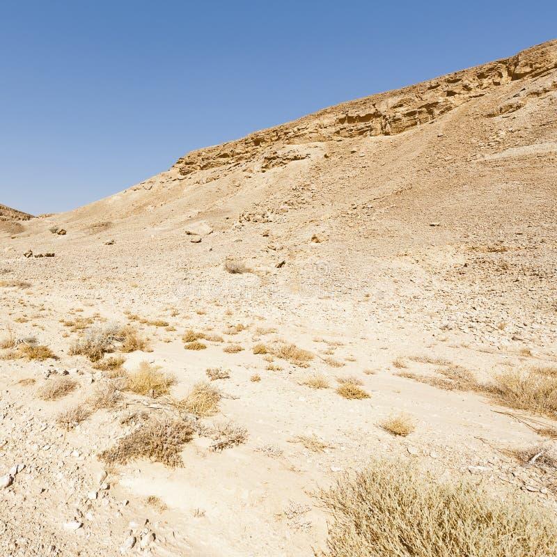 Melancholia i czczość pustynia w Izrael zdjęcie royalty free