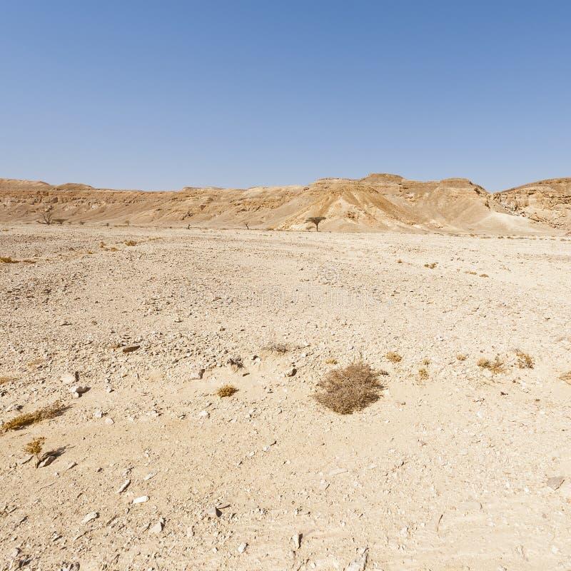 Melancholie en leegte van de woestijn in Israël royalty-vrije stock foto