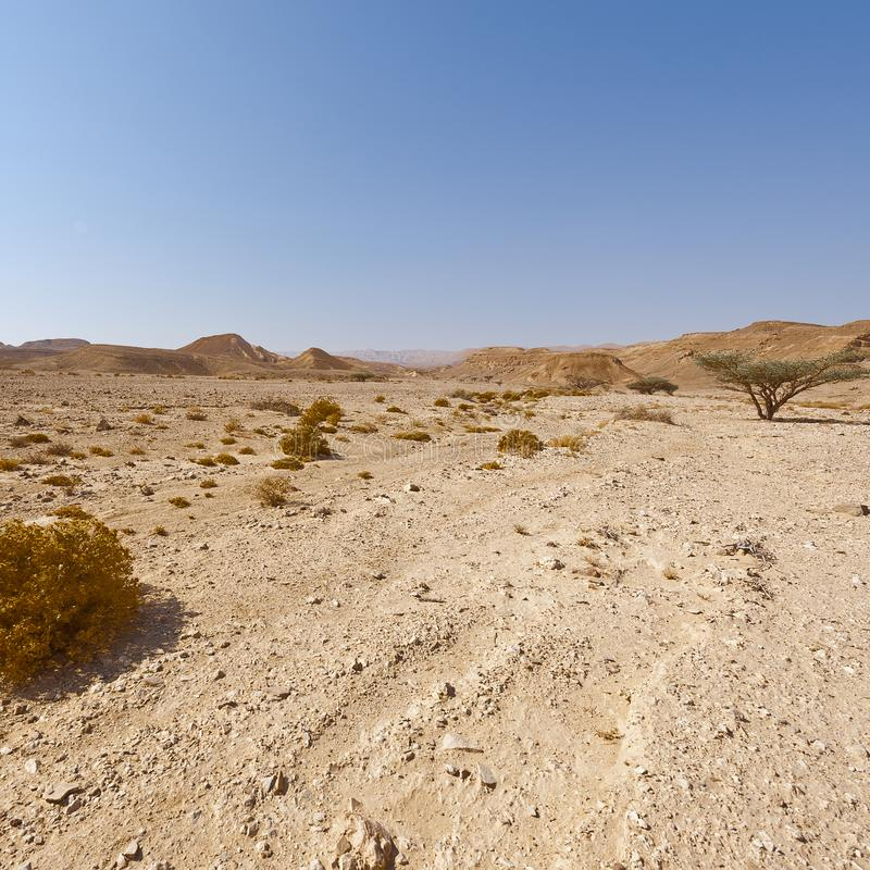 Melancholie en leegte van de woestijn in Israël royalty-vrije stock afbeelding