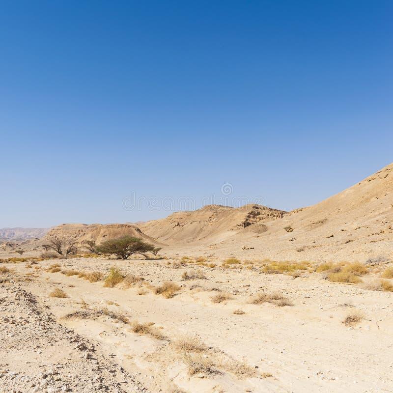 Melancholie en leegte van de woestijn in Israël stock foto