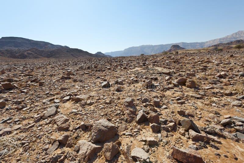 Melancholie en leegte van de woestijn in Israël stock afbeelding
