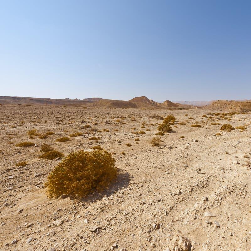 Melancholie en leegte van de woestijn in Israël stock fotografie
