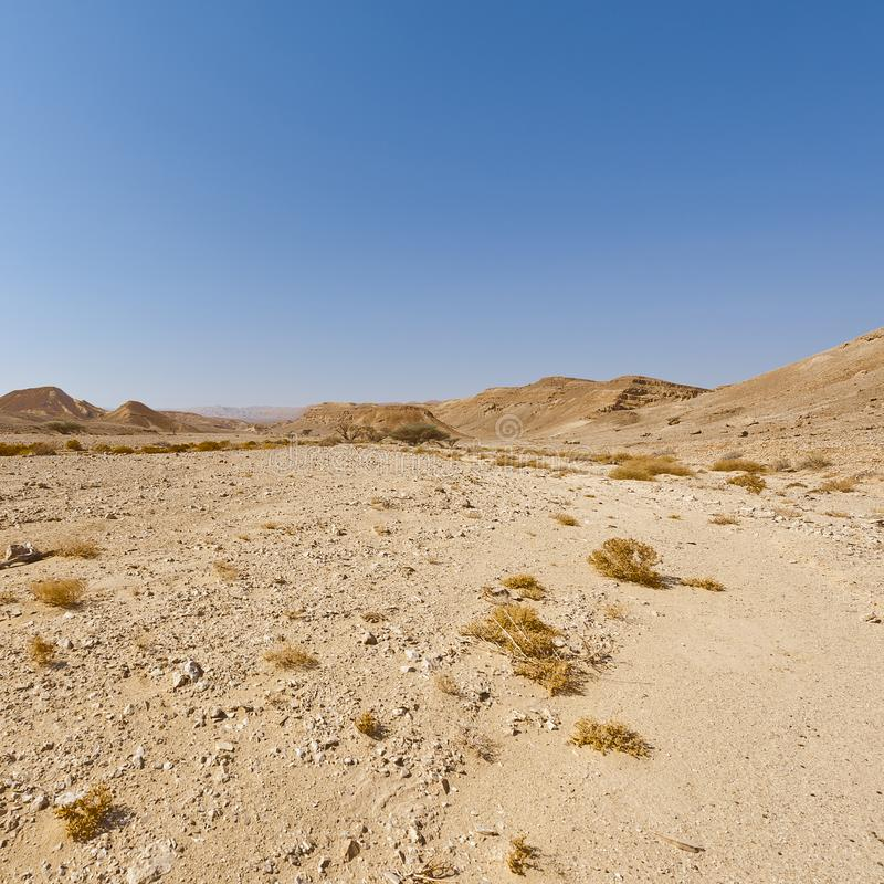 Melancholy and emptiness of the desert in Israel stock photos
