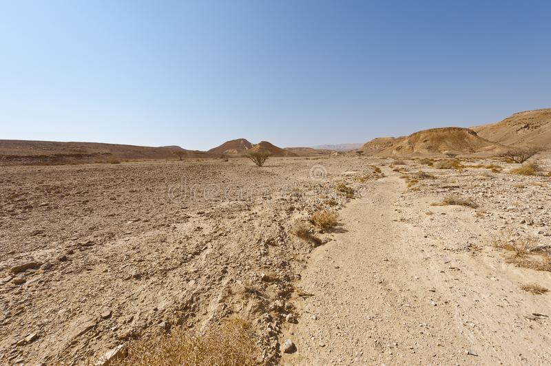 Melancholy and emptiness of the desert in Israel royalty free stock image