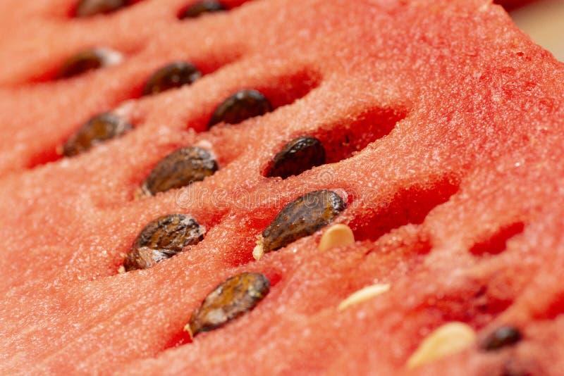 Melancia fresca com sementes, close up às sementes foto de stock royalty free