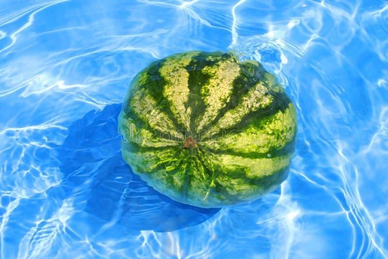 Melancia fresca na água foto de stock royalty free